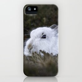 Close to wild mountain rabbit iPhone Case