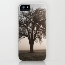 Solitude Frost iPhone Case