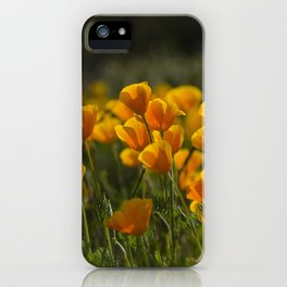 Poppy Fields Forever iPhone Case