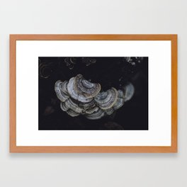 subtle signs of the other world Framed Art Print