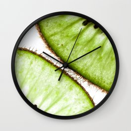 Macro photo of kiwifruit Wall Clock
