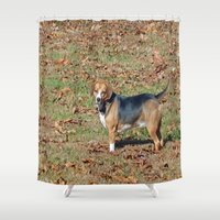 beagle Shower Curtains featuring Beagle by Frankie Cat