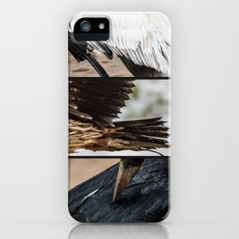Composition of Wings iPhone Case