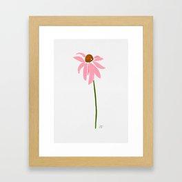 Cone Flower Sunshine Framed Art Print