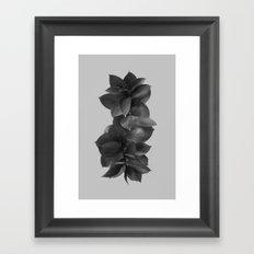 GREEN FOLIAGE BLACK on GREY Framed Art Print