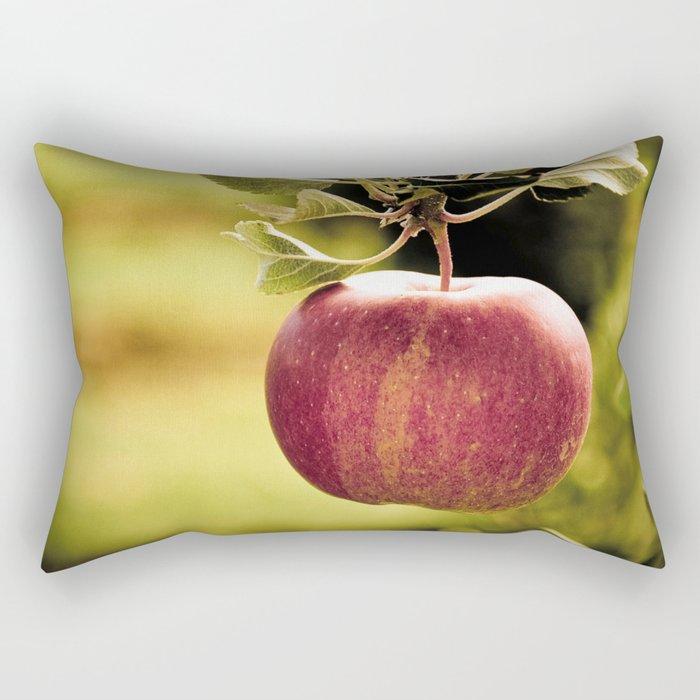 Apple in Orchard Rectangular Pillow
