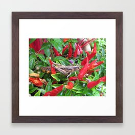 Spicy Framed Art Print