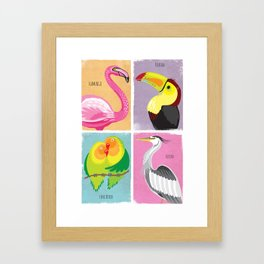 Bright Birds Framed Art Print