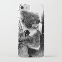 koala iPhone & iPod Cases featuring Koala by Alan Hogan