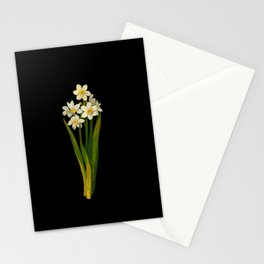 Narcissus Mary Delany Vintage Paper Flower Collage Floral Botanical Art Stationery Cards