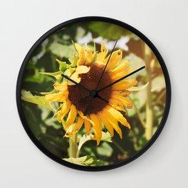 Sunflower Shine Wall Clock