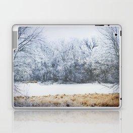 Peaceful Chill Laptop & iPad Skin