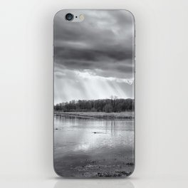 Birdland BW iPhone Skin