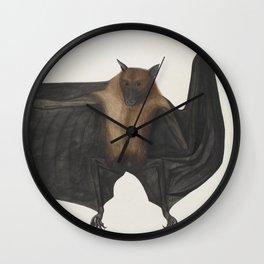 Vintage Indian Fruit Bat Illustration (1782) Wall Clock
