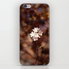 Blossom (Square) iPhone Skin