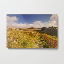 Hadrian's Wall, near Housesteads Fort in early morning light Metal Print