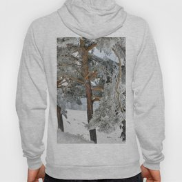 """""""Ghost Forest II"""". Yesterday after the snowstorm Hoody"""