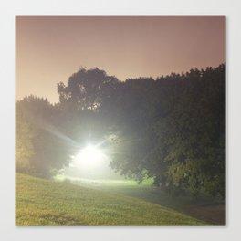 Bellwoods Fog Canvas Print