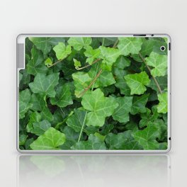 Creeping Ground Cover Laptop & iPad Skin