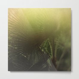 Tropical Fade Metal Print