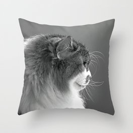 Whiskers Throw Pillow