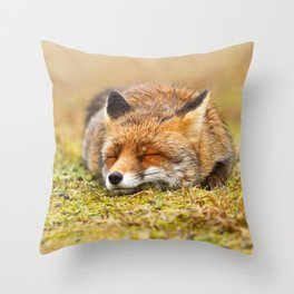 Comfortably Fox (red fox sleeping) Throw Pillow