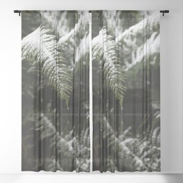 PNW Forest Fern III - Minimal Nature Photography Sheer Curtain