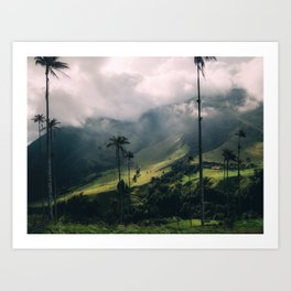 Salento Wax Palms Art Print