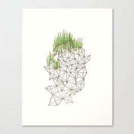 Geo'd Canvas Print