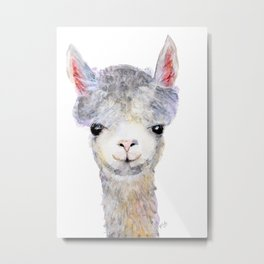 Baby Alpaca / Llama Metal Print