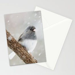 Dark-eyed Junco Stationery Cards
