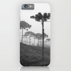 Araucaria Angustifolia iPhone 6 Slim Case