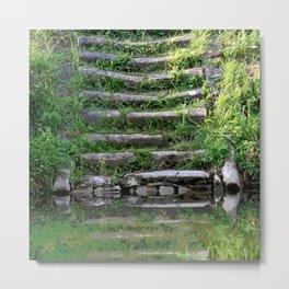 River stairs Metal Print