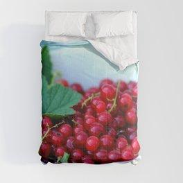 Currant Fruit Vitamins Comforters