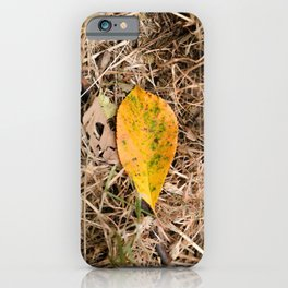 Yellow leaf on the ground iPhone Case