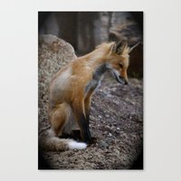 ruby Canvas Prints featuring Ruby || by Sara Brostmeyer