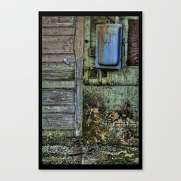 Painted Door II Canvas Print