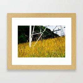 Orange Pylon Grass Framed Art Print
