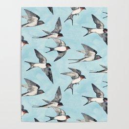 Blue Sky Swallow Flight Poster