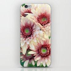 Pretty Enough iPhone & iPod Skin