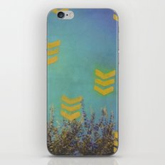 Above the Trees iPhone & iPod Skin