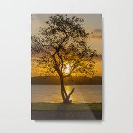 Tree Of Tomorrow Metal Print