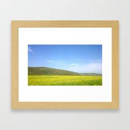 yellow flower field Framed Art Print