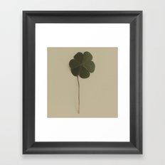 Nature Watch No. 9 Framed Art Print