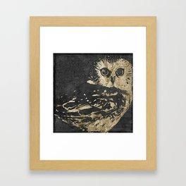 Golden Owl Framed Art Print
