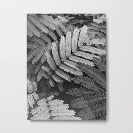 plant portrait Metal Print