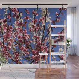 Spring Blossom on a Tree Wall Mural