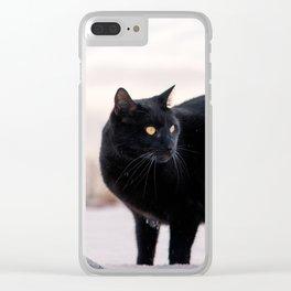 black cat in a winter scene Clear iPhone Case