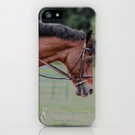 Bay Pony iPhone Case