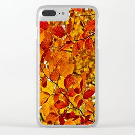 Colors of fall Clear iPhone Case